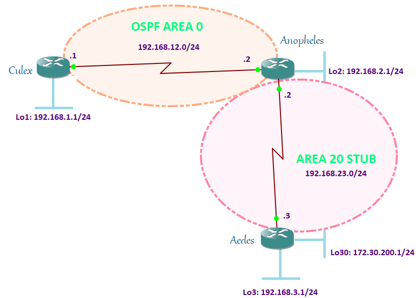 OSPF neighbor adjacency requirements